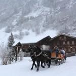 Pferdekutsche beim Stockhambauer