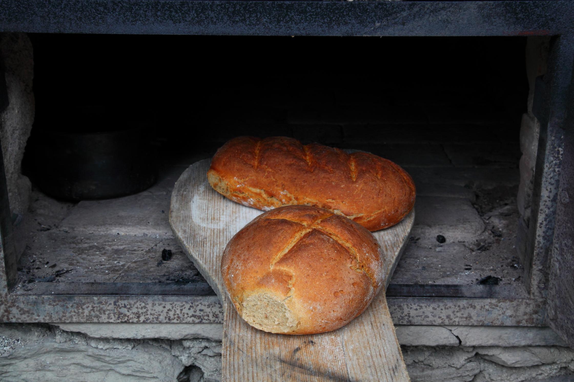 Köstliches Brotaus unserem Backofen